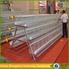 automatic chicken cage system(5 tiers)