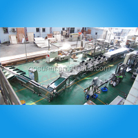 fruit and vegetable cleaning line