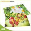 cartoon PP placemat /Cheap Plastic placemat /dining placemat