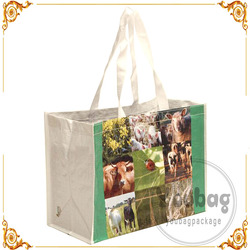 Wholesale Custom Promotional Reusable and Foldable Laminated Tote Recyclable PP woven bag