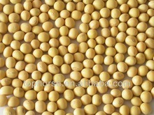 Competitive Price for Soybean