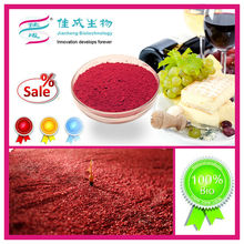 Organic Food Colors Red Fermented Rice Powder Manufacturer