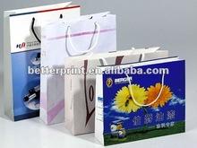 Hot Sale Customized Paper Bag/ Handbag/Packing Bag/Kraft bag