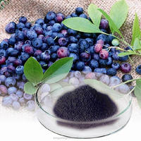 100% Natural Bilberry Extract,European Bilberry Extract Powder,European Bilberry Extract