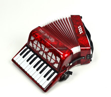 High quality parrot accordion for sale
