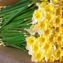 High quality yellow daffodil for wedding decoration artificial daffodil flowers