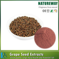 China supplier sell grape seed extract alcohol 95