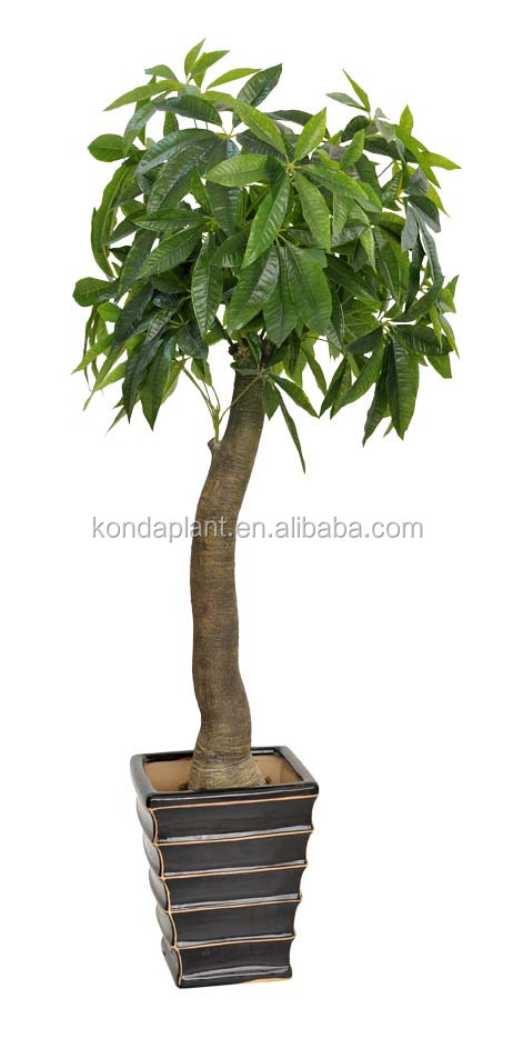 Artificielle petits bonsa s en plastique plantes d for Arbres artificiels interieur