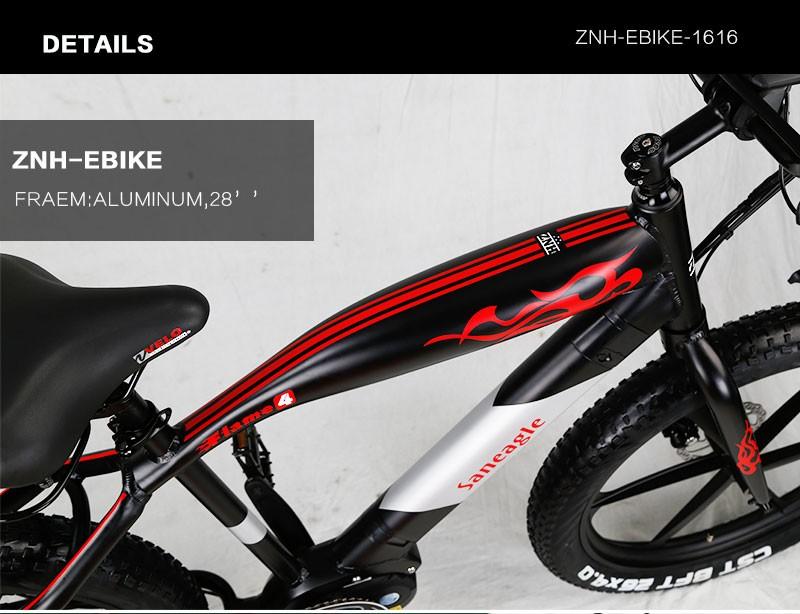 znh-e-bike-1616_02