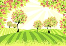 shing sun shone the ground with pink flower wallpaper for kids/wall murals fo home decoration