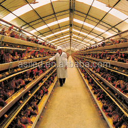 reduce electrical expenses and boost production lighting for farm