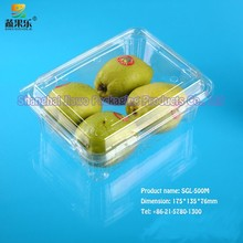 hot sale clamshell disposable fruit tray SGL-500M