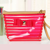 PVC Cosmetic Bag with Color Trim Clear Vinyl Travel Makeup Bag Beauty Case