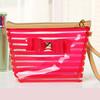 PVC Cosmetic Bag with Color Trim Clear Vinyl Travel Makeup Bag Beauty Case