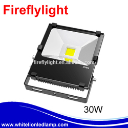 Super bright 30 watt high power led flood light waterproof IP65 with best price