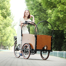 2015 new price electric cargo bike three wheel pedal assisted road bike tricycle china