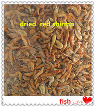 Kinds of Freeze Dried Red Shrimp For Fish Food