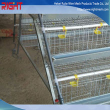 Quality Products Chicken Farm Layer Cages for Sale in Zimbabwe