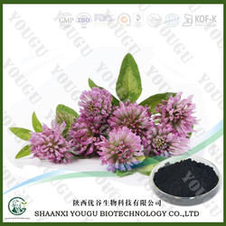 Red Clover Extract,Isoflavones 8% 20% 40%, Red Clover Extract Powder