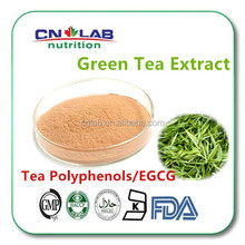 Low Price ISO Certified 90% Polyphenols Green Tea Powder Extract,green tea leaf extract powder