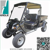 Street legal electric vehicles, electric golf cart with lifted suspension, EG2040HCXR