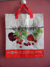Wenzhou 2011 foldable recycle rpet shopping bag