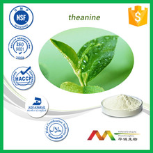 100% Natural Quality Green Tea Extract Theanine