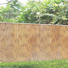 Bamboo surface wood cement board construction building material for wall