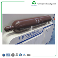 ISO11439 113L 20mpa Type 1 Cylinder CNG