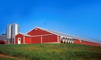 Steel prefab animal house