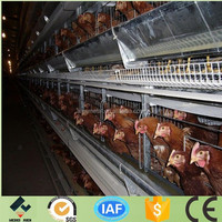 professional manufacture chicken layer battery cages have best price and good quality