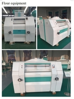 HOT SALE in South Africa widely used maize milling machine price