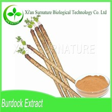 Supply 100% natural organic burdock root extract