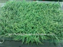 Indoor decorative Artificial Grass/ Spring dark green grass