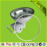 reasonale price induction high power factor induction fluorescent new flood light