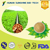 100% natural hot sell product soybean extract/Soy bean Isoflavones