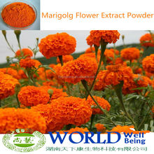 Low Price 100% Natural High Quality Powder Marigold Extract, Marigold Flower Extract, Marigold Extract Powder 5%-90% Lutein