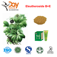 High Quality 100% Natural Siberian Ginseng Extract Eleutherosides B + E