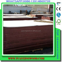 (a27) cheap pine and eucylytus veneer and plywood sheets for construction concrete forms materials
