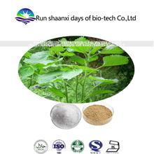 Ramie Leaf Extract Boehmeria Nipononivea Fatty Acid 10%