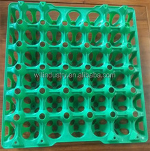 Factory Price plastic tray with holes/plastic egg tray for sell with high quality