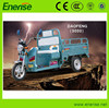 48V/60V,650W Electric Tricycle,Adult Style,3 Wheel Electric Bike,Electric Bicycle for Passenger and Cargo Loading