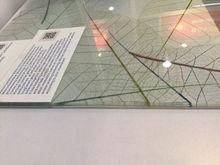 2015 de pequim, china preço de fábrica temperado de alta qualidade projeto especial moderno decrative esmalte de vidro