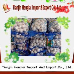 fresh china garlics price pure white garlics and normal white garlics