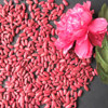 british red kidney beans types of beans