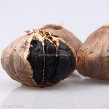 The Best Vegetable Product from China Aged Black Garlic