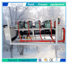 Bitzer water cooled screw low temperature parallel condensing unit with water cooling tower for balst freezer
