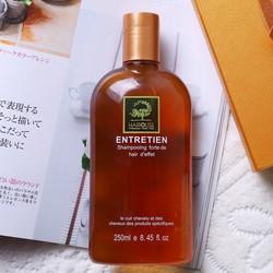 Ginger hair loss garlic shampoo solution oil
