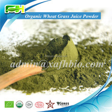 Orgánica de hierba de trigo en polvo ( 100 gramps de muestras de libre de carga )