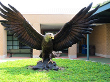 China famous Master manufacter decorative casting life size bronze eagle statues for sale